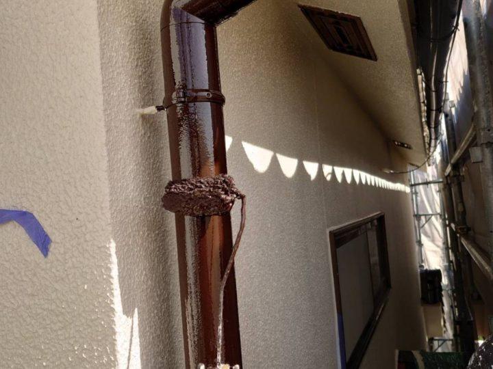雨樋塗装/上塗り